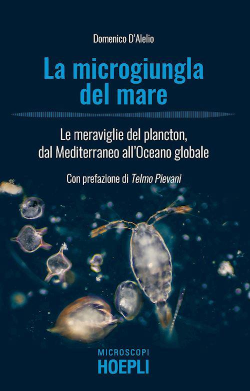 la Repubblica ed. Napoli